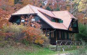 Nordrach - Nordic-Walking-Tour Nr. 6: Moosbachwald-Kornebene