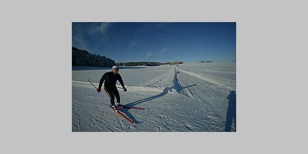 Skating-Loipe: Trainingsrunde unterhalb des Skilift Ziegelhäuser