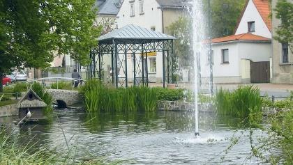Dorfteich in Weinböhla