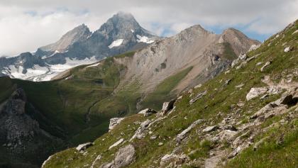 Von der Glorer Hütte zum Peischlachtörl: Blick zurück auf den Großglockner
