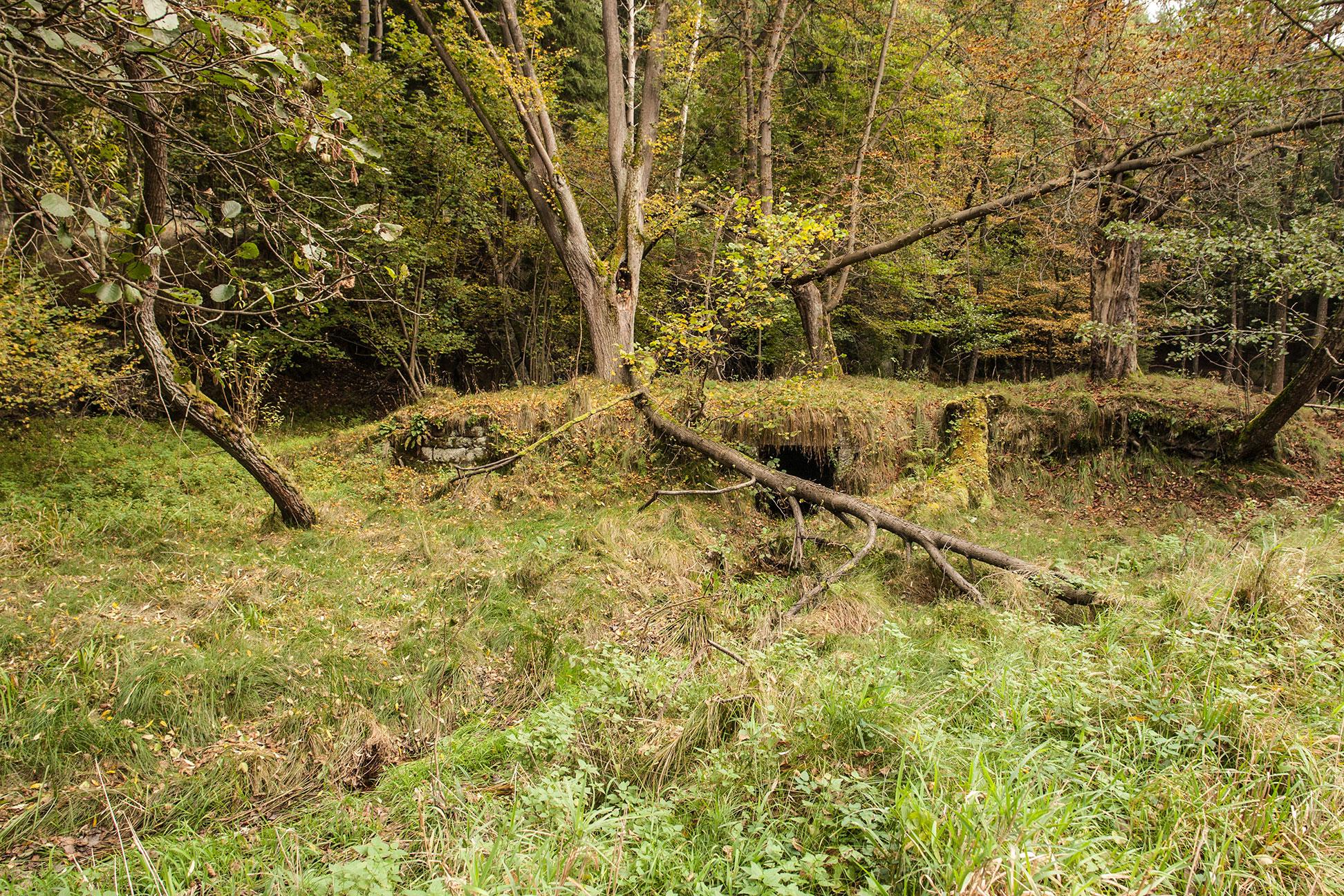 Ruinenrest in Hinterdittersbach