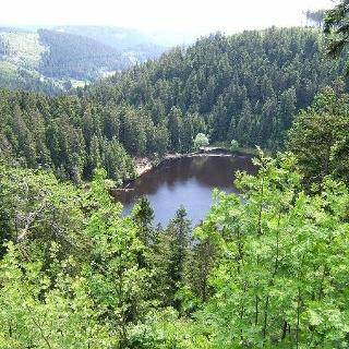 Der Glaswaldsee