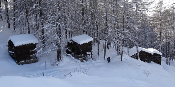 Sur le chemin de randonnée hivernale, peu avant Ried