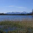 Der Kirchsee