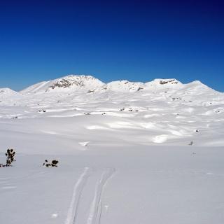 Am Schwarzmoossattel sieht man die Weite des Toten Gebirges - die rechte der vier Erhebungen ist der Grießkogel.