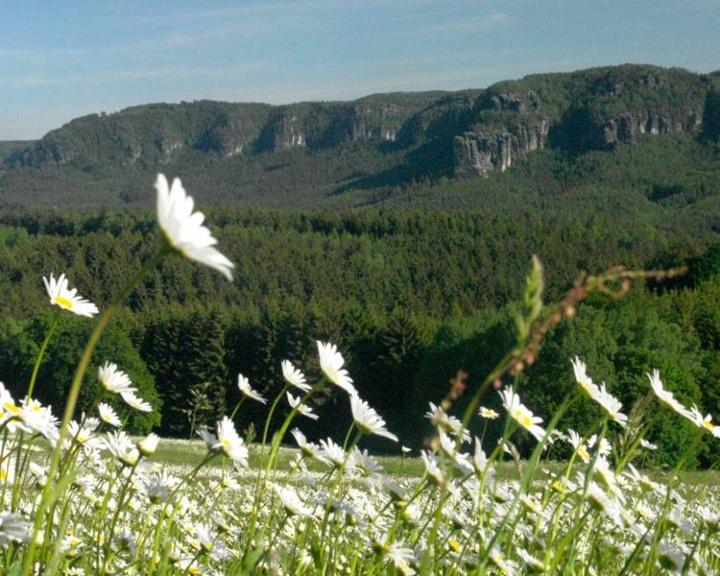 Foto Panoramablick auf die Affensteine
