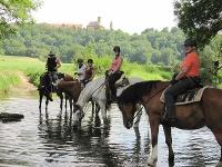 Kirchberg/Jagst aus einer ganz neuen Perspektive erleben Reiter beim Wanderreiten Hohenlohe