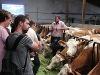 Fragen und Antworten zum Tagesablauf auf dem Bauernhof  - @ Autor: Beate Philipp  - © Quelle: Hardy Mann