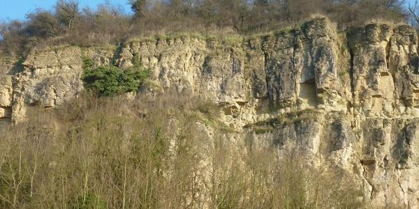 Le chemin des falaises de Nittel