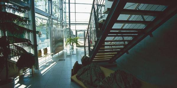 Urweltmuseum