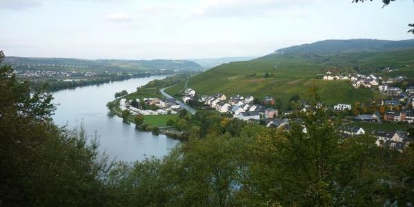 Vue de la périphérie de Mehring en remontant la Moselle en direction de Riol et Longuich