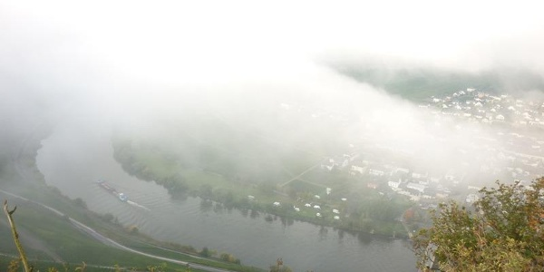 View from the Vogelsang viewpoint over the Moselle river flowing past Trittenheim far below