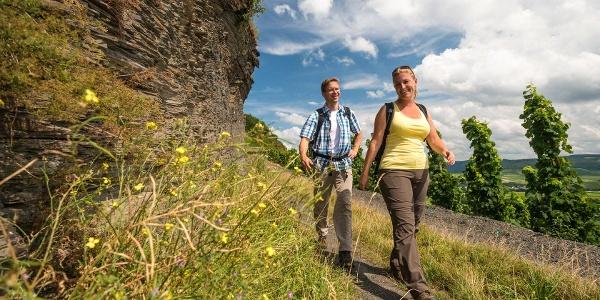 Leisteenrotsen langs het pad op de Brauneberg onder de Kammerfelsen