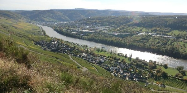 From the vineyards above Graach looking over to Graach and Bernkastel