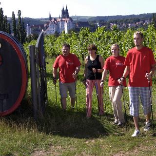 Nordic Walking entlang der Weinstrecke in Meißen