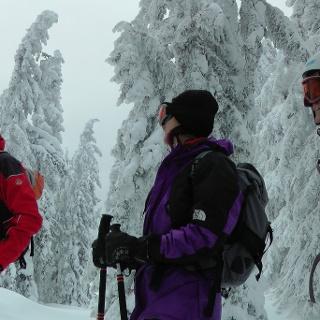 Oft ist der Wald im Gipfelbereich eine Märchenlandschaft (26.12.2011)