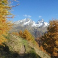 Panoramablick und leuchtende Herbstfarben