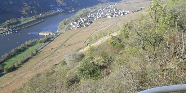 View from the Kirster Ridge into the Moselle Valley near Enkirch