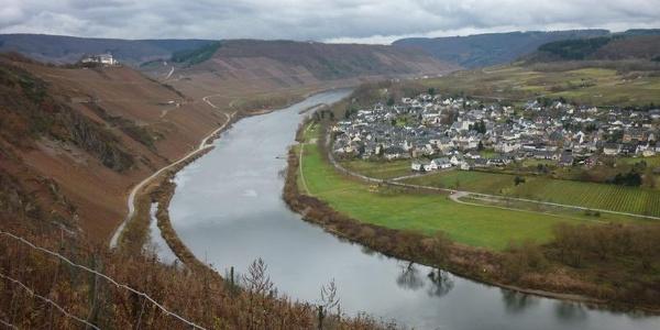 Blick von der Drieschhütte auf Pünderich und die Marienburg