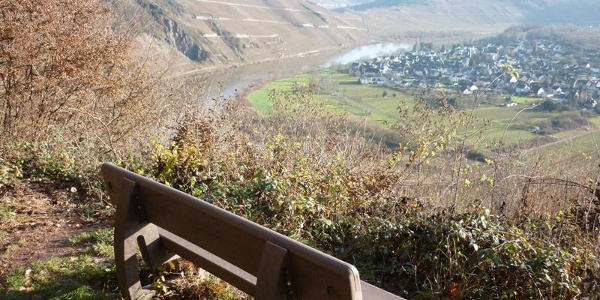 View between Reiler Hals and the Prinzenkopf, looking over to Pünderich