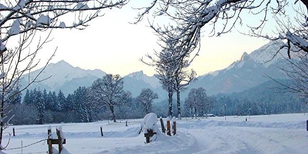 Winterwanderung Sonnenweg - Graswangtal