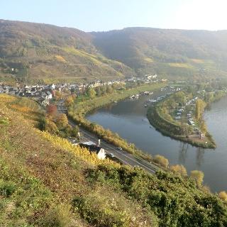 Aussicht auf Senheim mit Hafen
