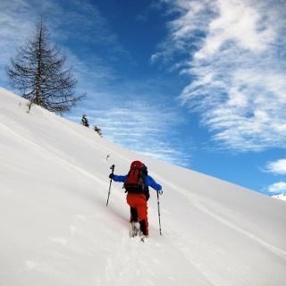 Der Steilhang wird durch eine Querung nach rechts verlassen, man erreicht einen Rücken und lichten Wald.