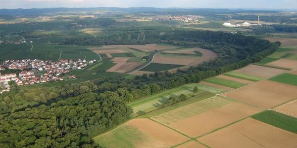 Naturschutzgebiet Alte Neckarschlinge Lauffen