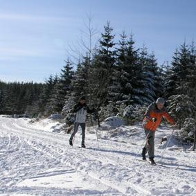 Grünhüttenloipe, Gernsbach-Kaltenbronn, klassisch/skating