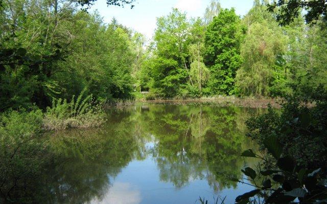 Aussichtsreich um Waldbronn und Karlsbad