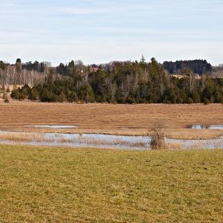 Blick bei Jägersbronn über das Moor.