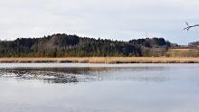 Rund um den Maisinger See