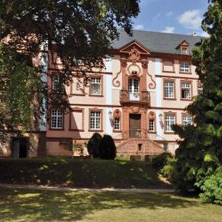 Schloss Dreis