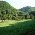 Streuobstwiese im Baybachtal