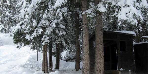 Bei der kleinen Hütte (Rodelbahnstart) zweigt die Spur in den dichten Wald hinein ab.