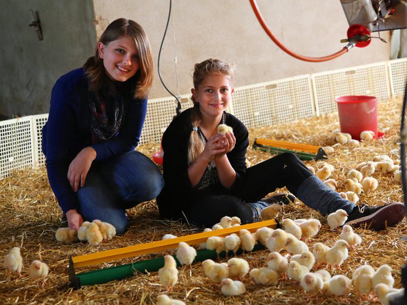 Saskia und Annika Noz bei den frisch geschlüpften Küken  - @ Autor: Beate Philipp  - © Quelle: Hohenlohe + Schwäbisch Hall Tourismus e.V.