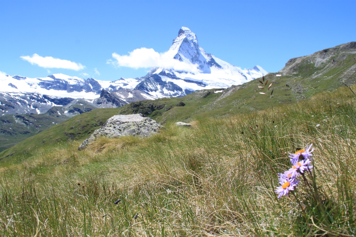 At Höhbalmen, with Matterhorn in view