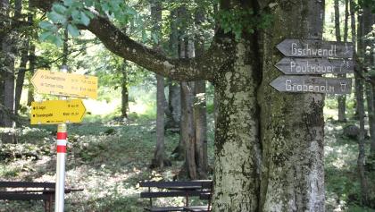 Wegweiser bei Zdarskyhütte