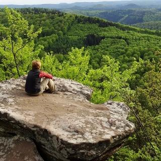 Drachenfels, Aussicht vom Südfels1