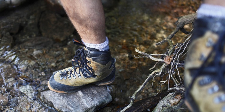 3-Tages-Rundwanderung im Hochschwarzwald