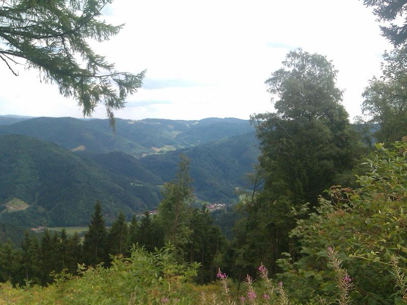 Westweg, von Pforzheim nach Hausach