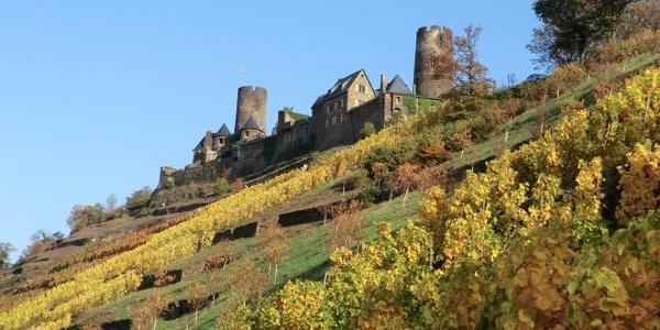 Burg Thurant boven de wijngaarden van Alken