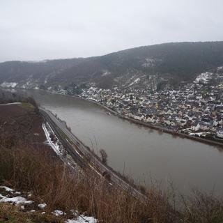 Aussicht aus den Weinbergen auf den Koblenzer Stadtteil Lay