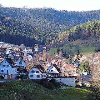 Blick vom Schöllkopf auf Enzklösterle im Schwarzwald