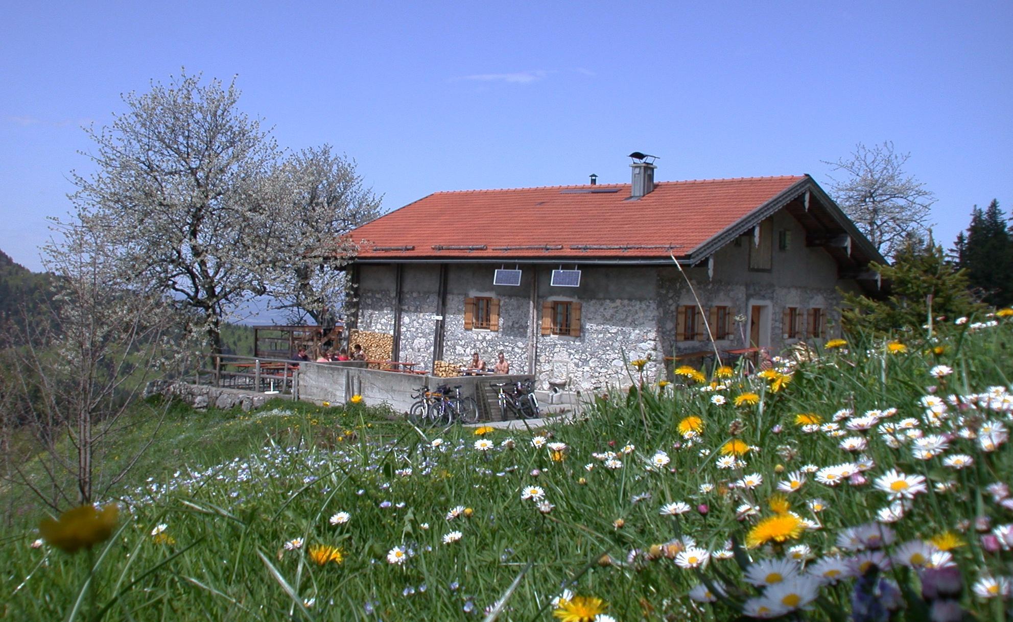 Frühling auf der Wagner Alm