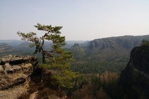 Foto Am unteren Fremdenweg (Kleiner Wildenstein)