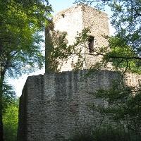 Burgruine Alt-Wolfstein
