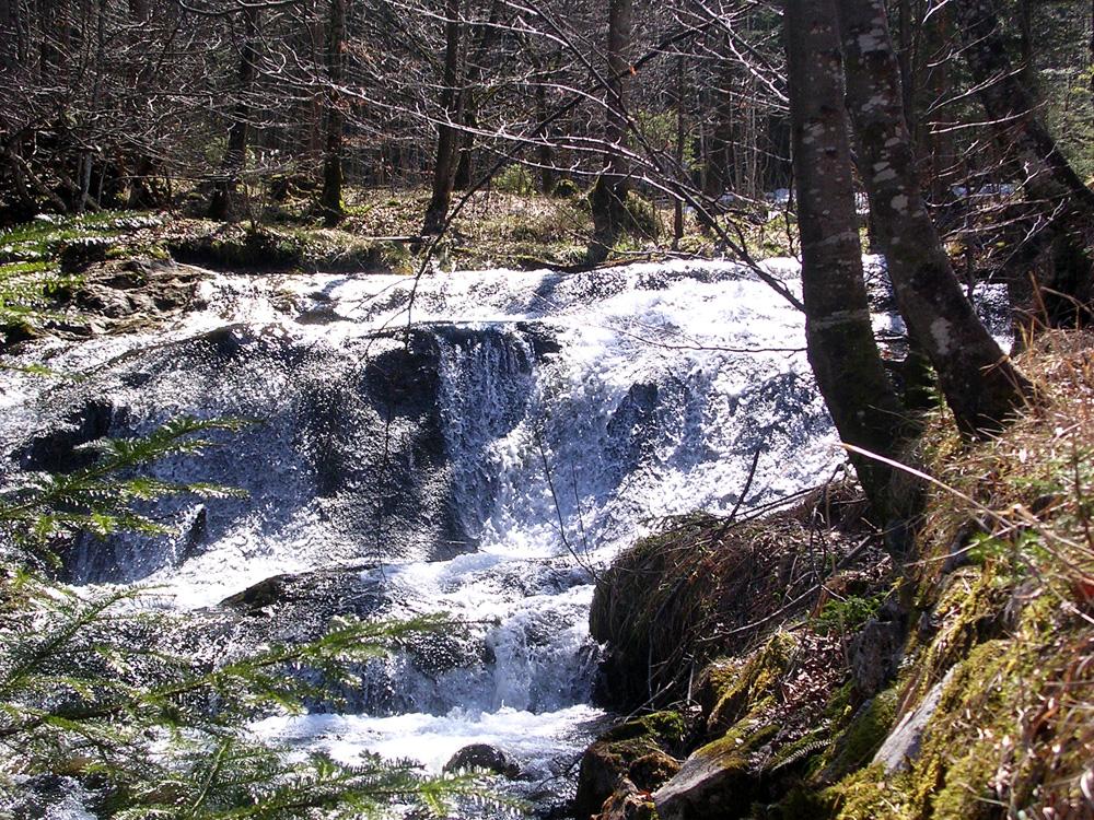 Wasserfall am Fluderbach
