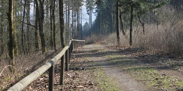 Handlauf Blindenwanderweg