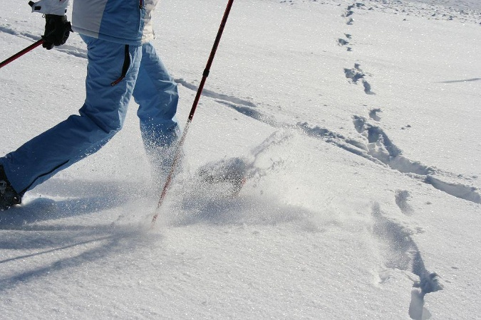 Schneeschuhtrail Todtnauberger Horn